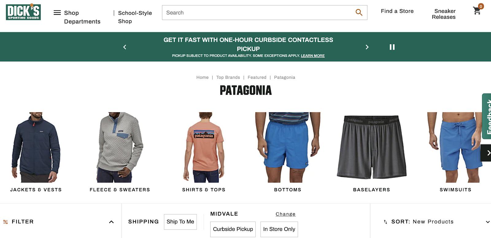 dicks sporting goods online retailer website