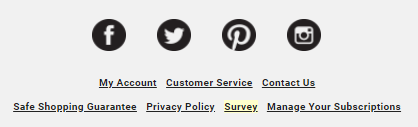 ecommerce website with customer survey link in email newsletter
