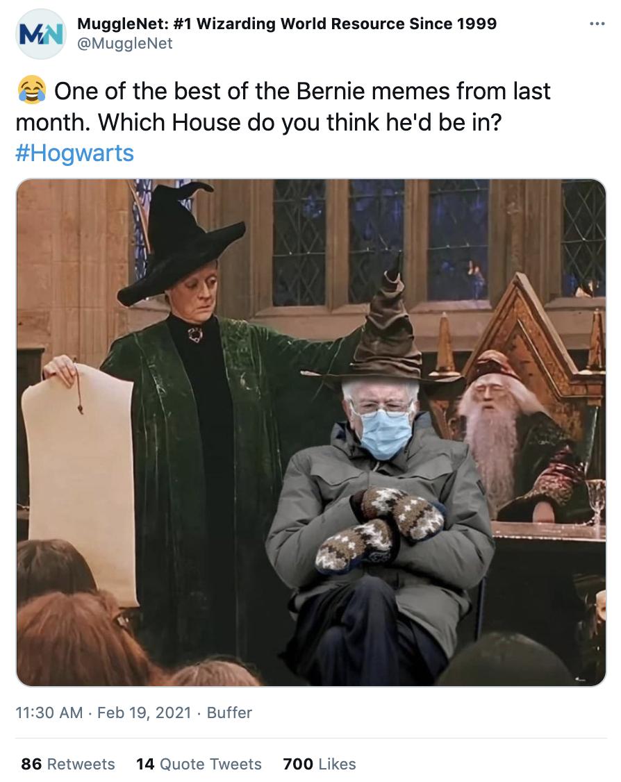 bernie sanders mittens harry potter meme