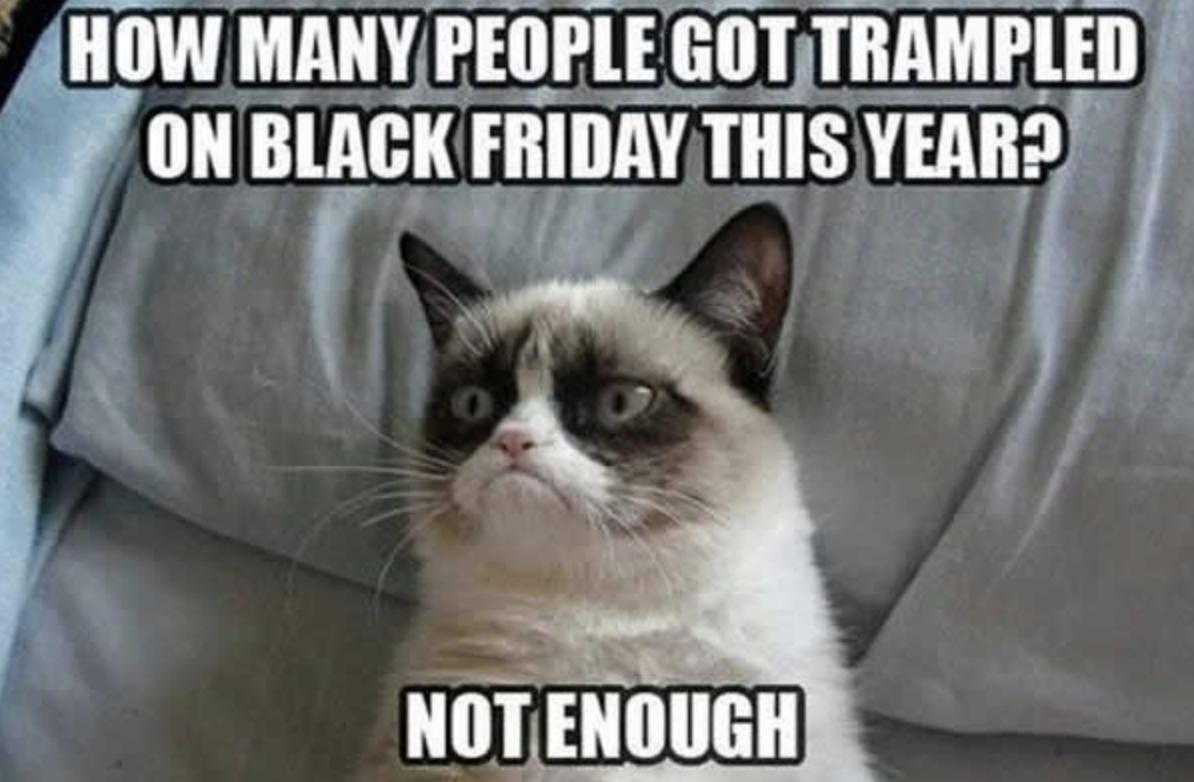 grumpy cat black friday meme