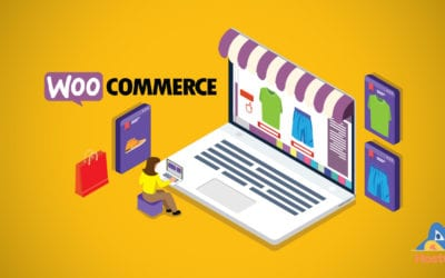 How to Update a WooCommerce Store That Was Built For You