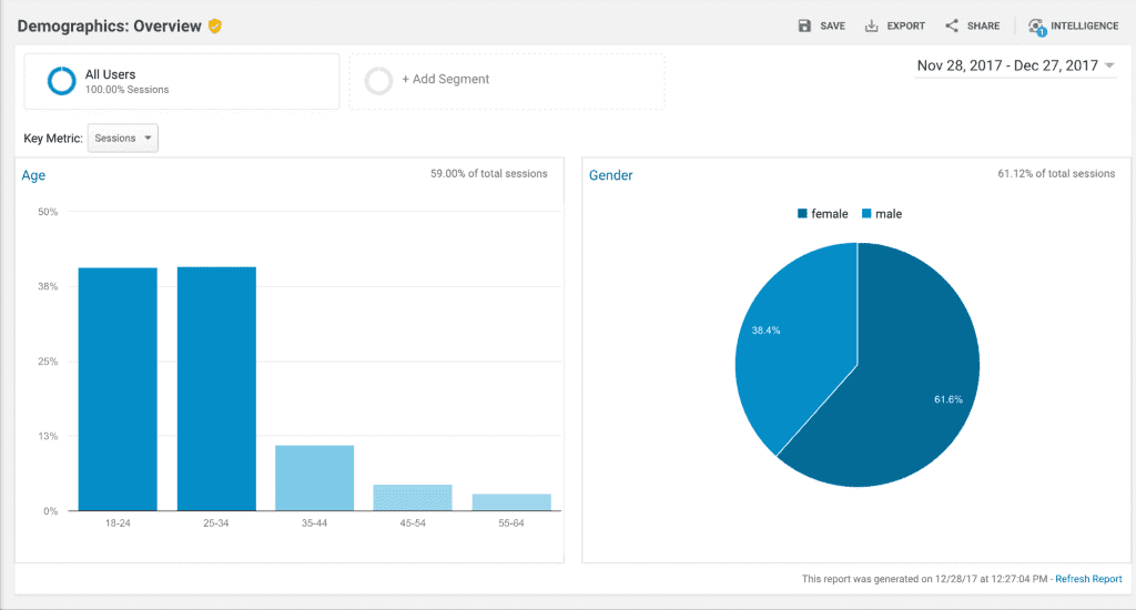 use Google Analytics to see website visitor demographics